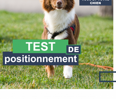 Test de positionnement Educateur Canin.